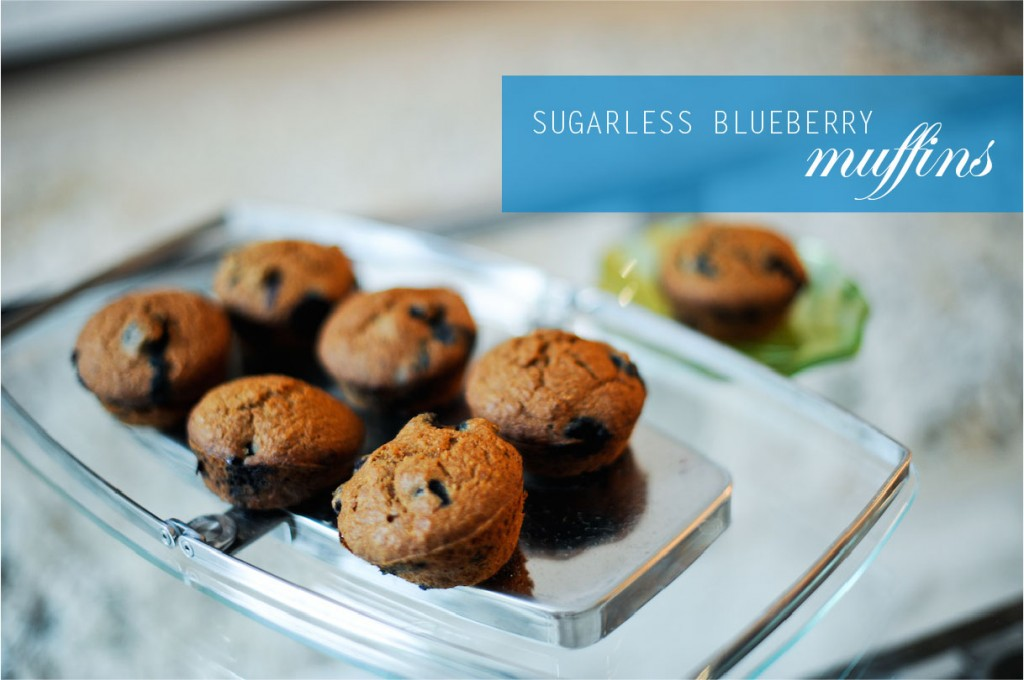 sugarless blueberry