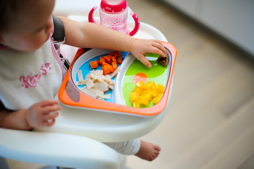 Baby Foods to Make at Home