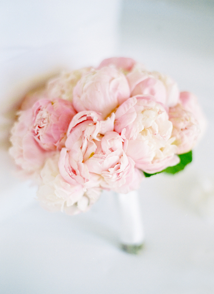blush pink peonies bouquet