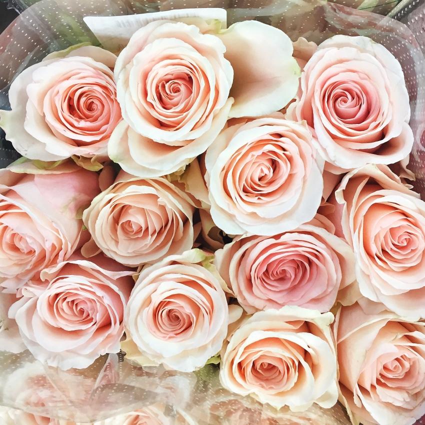 Fashionable Hostess Instagram - Roses