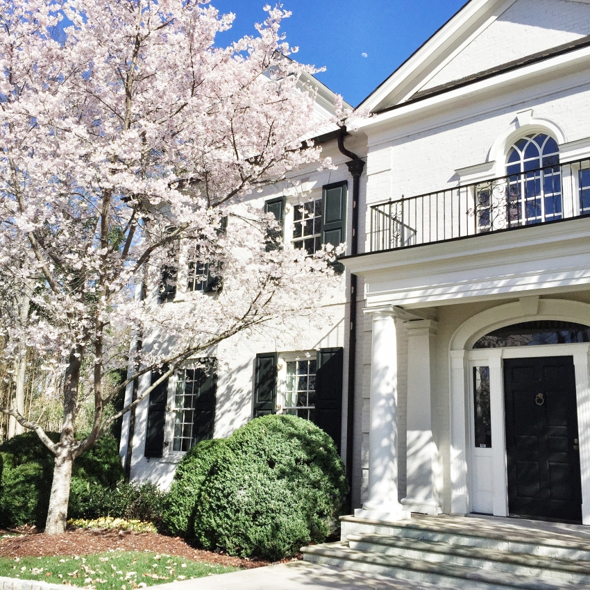 Southern Dream Home with Cherry Blossoms