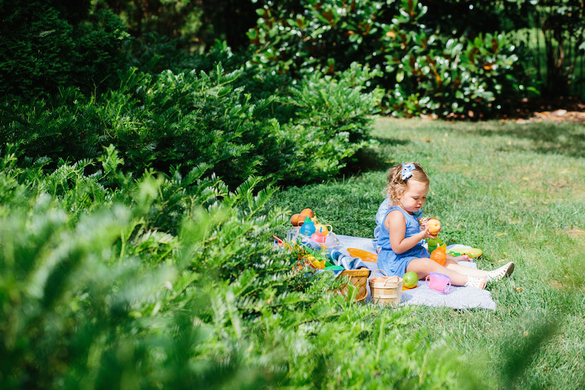 Picnic with Munchkin by Fashionable Hostess3