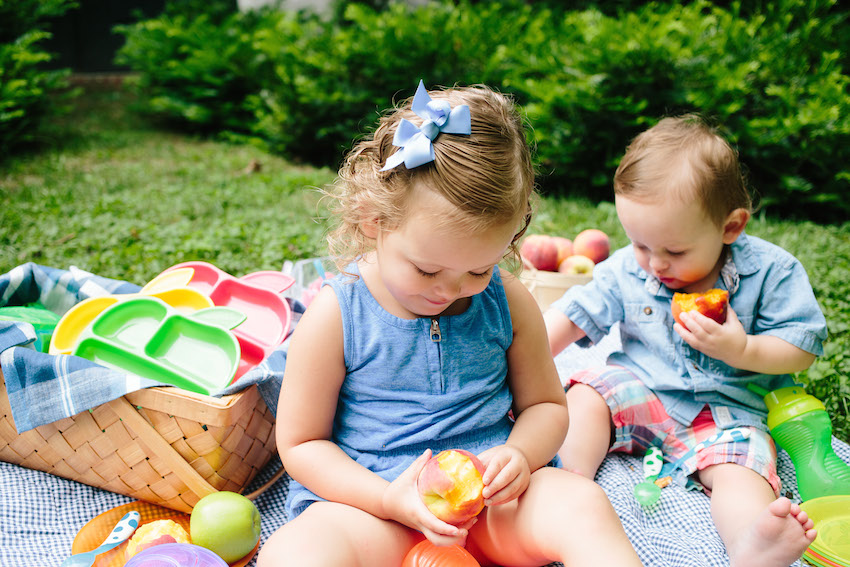 Picnic with Munchkin by Fashionable Hostess14